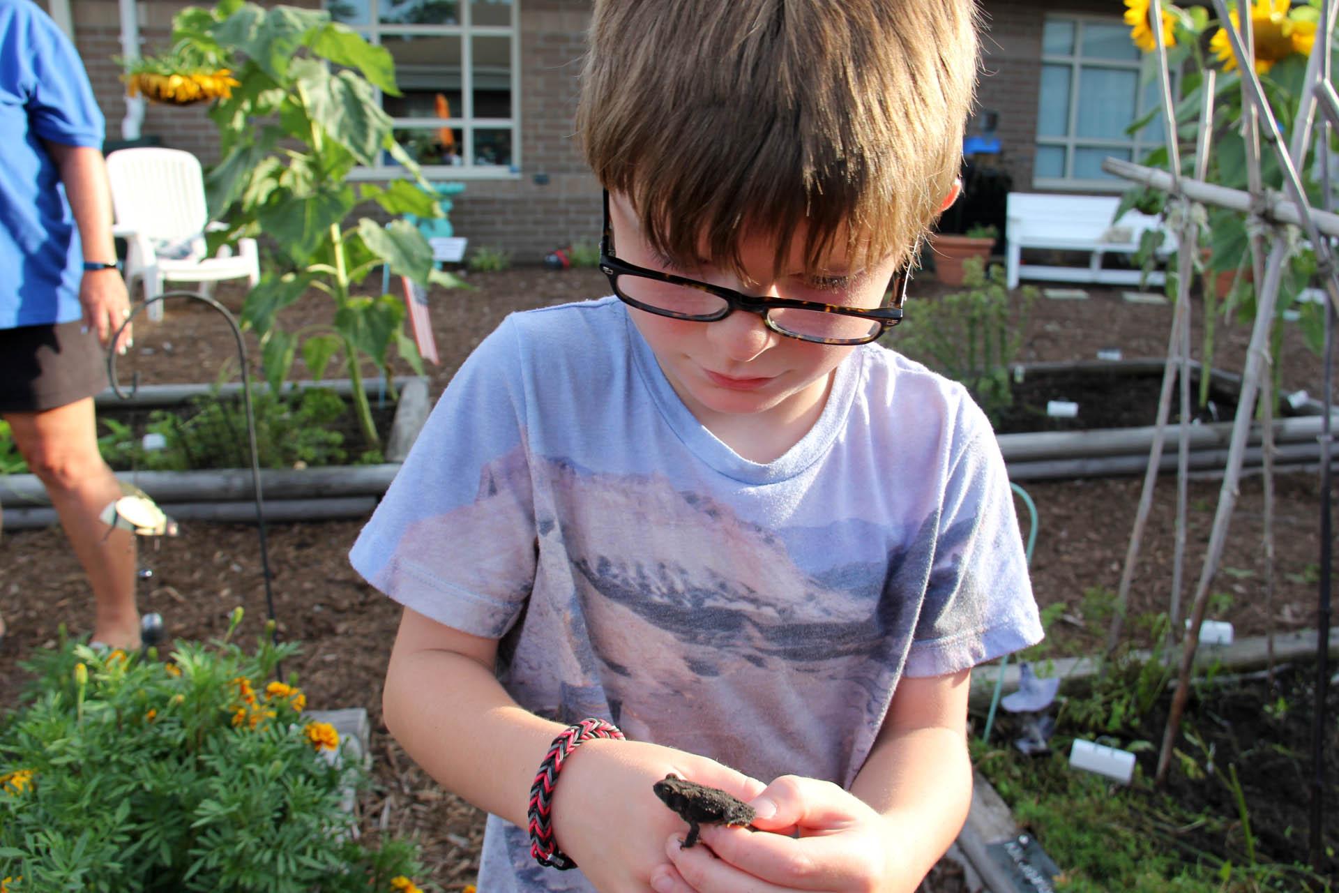 Frog Seatack Garden A 2016-08-10